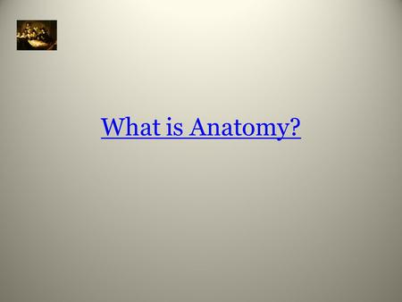 What is Anatomy?. Study of the body's structure and relationships.