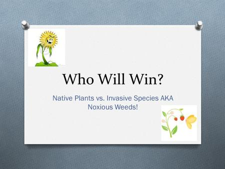 Native <strong>Plants</strong> vs. Invasive Species AKA Noxious Weeds!