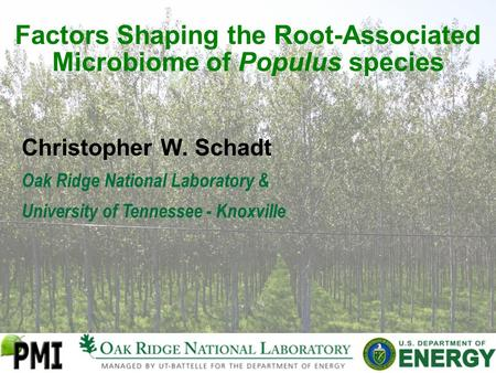 Factors Shaping the Root-Associated Microbiome of Populus species Christopher W. Schadt Oak Ridge National Laboratory & University of Tennessee - Knoxville.