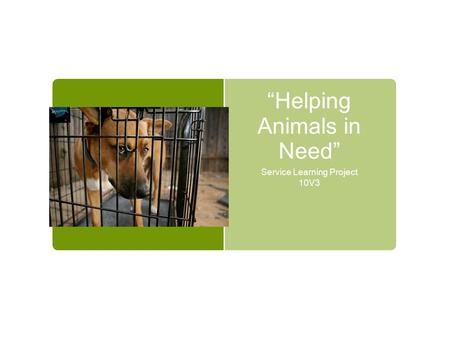 """Helping Animals in Need"" Service Learning Project 10V3."