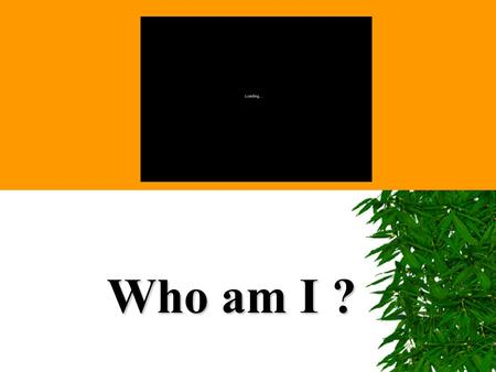 Who am I ?. Identity Does N NN Nature who you are? or N NN Nurture decide.