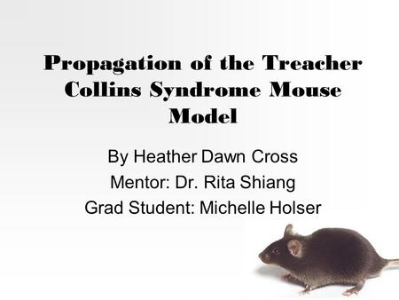Propagation of the Treacher Collins Syndrome Mouse Model By Heather Dawn Cross Mentor: Dr. Rita Shiang Grad Student: Michelle Holser.