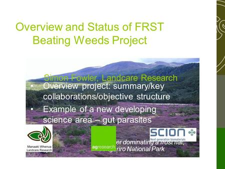 Heather dominating a frost flat, Tongariro National Park Overview and Status of FRST Beating Weeds Project Simon Fowler, Landcare Research Overview project: