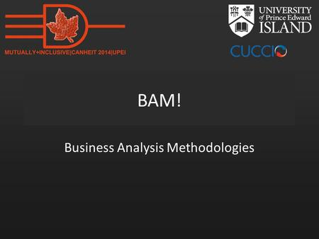 BAM! Business Analysis Methodologies. www.mun.ca Change-driven or Plan-driven?
