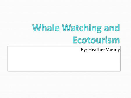 By: Heather Varady. Whale watching is the observation of surfacing whales and other cetaceans in their natural habitat. Ecotourism is responsible travel.