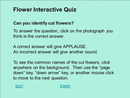 To answer the question, click on the photograph you think is the correct answer. A correct answer will give APPLAUSE. An incorrect answer will give another.
