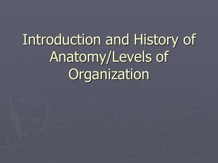 Introduction and History of Anatomy/Levels of Organization.