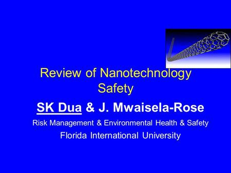 Review of Nanotechnology Safety SK Dua & J. Mwaisela-Rose Risk Management & Environmental Health & Safety Florida International University.