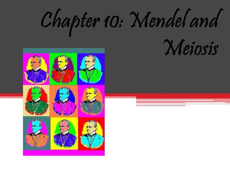 Chapter 10: Mendel and Meiosis September 28 2010.