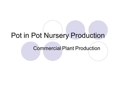 Pot in Pot Nursery Production