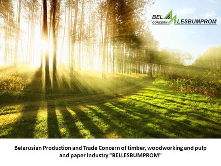 Belarusian Production and Trade Concern of timber, woodworking and pulp and paper industry BELLESBUMPROM