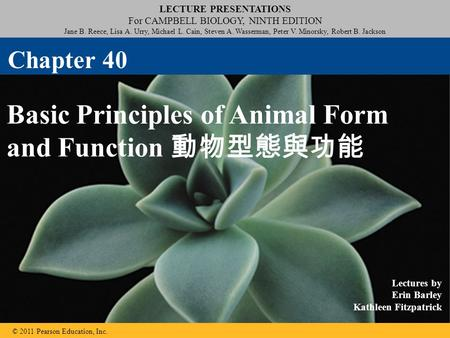 Basic Principles of Animal Form and Function 動物型態與功能
