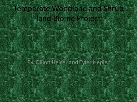 Temperate Woodland and Shrub land Biome Project By. Dillon Heiser and Tyler Hepler.