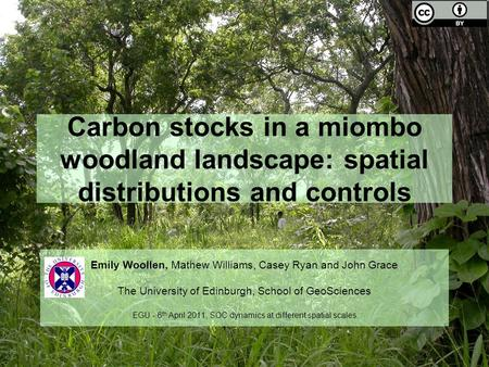 Carbon stocks in a miombo woodland landscape: spatial distributions and controls Emily Woollen, Mathew Williams, Casey Ryan and John Grace The University.