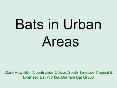 Bats in Urban Areas Clare Rawcliffe, Countryside Officer, South Tyneside Council & Licensed Bat Worker, Durham Bat Group.