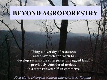 BEYOND AGROFORESTRY Using a diversity of resources and a low tech approach to develop sustainable enterprises on rugged land, previously considered useless,