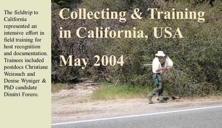 Collecting & Training in California, USA May 2004 The fieldtrip to California represented an intensive effort in field training for host recognition and.