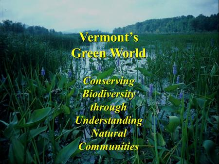 Vermont's Green World Conserving Biodiversity through Understanding Natural Communities.