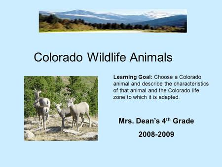 Colorado Wildlife Animals Mrs. Dean's 4 th Grade 2008-2009 Learning Goal: Choose a Colorado animal and describe the characteristics of that animal and.