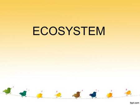 <strong>ECOSYSTEM</strong>.