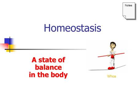 A state of balance in the body