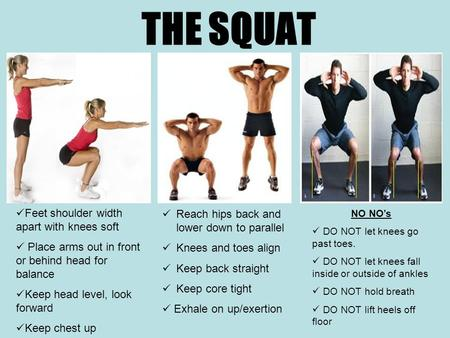 THE SQUAT Feet shoulder width apart with knees soft Place arms out in front or behind head for balance Keep head level, look forward Keep chest up NO NO's.
