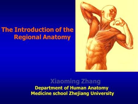 The Introduction of the Regional Anatomy Xiaoming Zhang Department of Human Anatomy Medicine school Zhejiang University.
