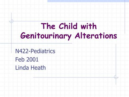 The Child with Genitourinary Alterations