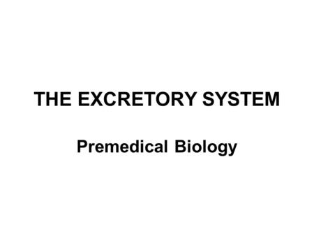 THE EXCRETORY SYSTEM Premedical Biology.