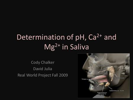 Determination of pH, Ca 2+ and Mg 2+ in Saliva Cody Chalker David Julia Real World Project Fall 2009.