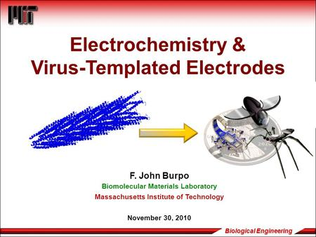 Biological Engineering Electrochemistry & Virus-Templated Electrodes F. John Burpo Biomolecular Materials Laboratory Massachusetts Institute of Technology.