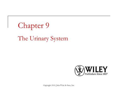 Chapter 9 The Urinary System