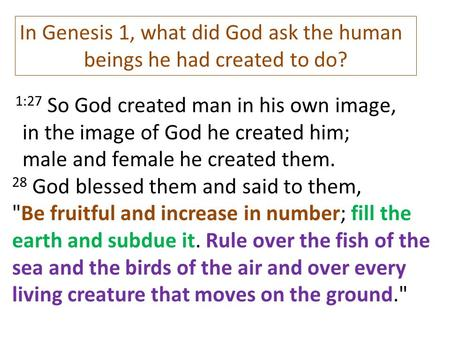 beings he had created to do?