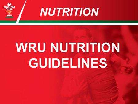 NUTRITION WRU NUTRITION GUIDELINES. HYDRATION You need to drink a minimum of 3 litres a day + whatever is required in training. Drink little and often.