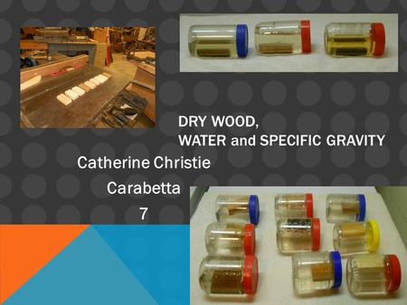 DRY WOOD, WATER and SPECIFIC GRAVITY Catherine Christie Carabetta 7.