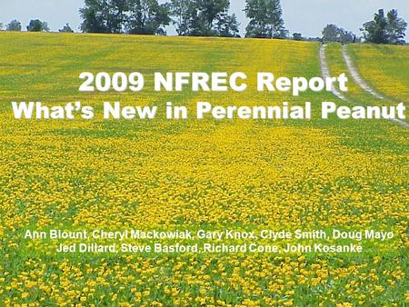 2009 NFREC Report What's New in Perennial Peanut Ann Blount, Cheryl Mackowiak, Gary Knox, Clyde Smith, Doug Mayo Jed Dillard, Steve Basford, Richard Cone,