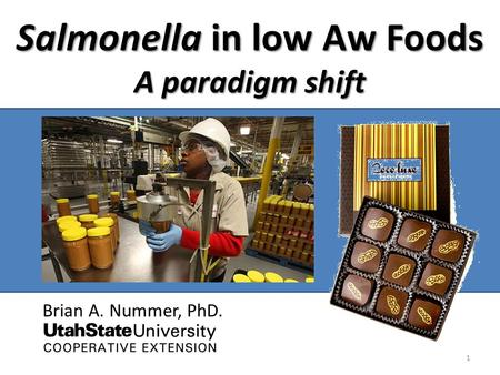 Salmonella in low Aw Foods A paradigm shift Brian A. Nummer, PhD. 1.