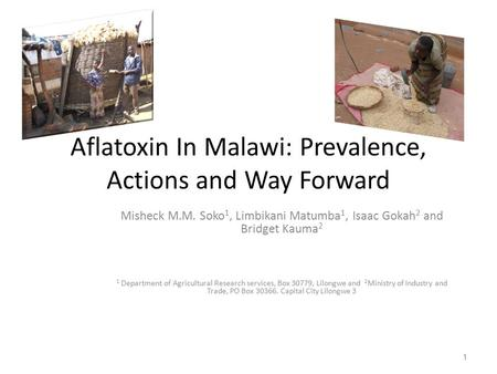 Aflatoxin In Malawi: Prevalence, Actions and Way Forward