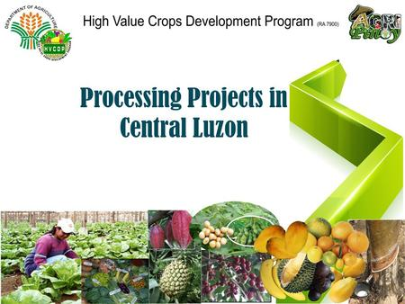 Processing Projects in Central Luzon. High Value Crops Development Program (HVCDP) created under RA 7900 of 1995 (An Act to promote production, processing,