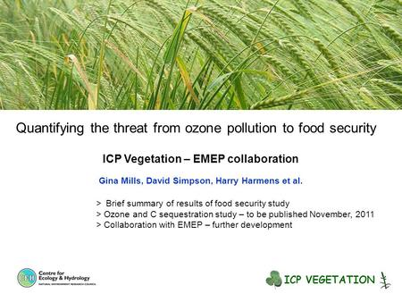Quantifying the threat from ozone pollution to food security ICP Vegetation – EMEP collaboration Gina Mills, David Simpson, Harry Harmens et al. > Brief.