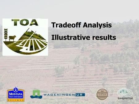 Tradeoff Analysis Illustrative results. TOA projects Ecuador - Carchi Potato-pasture system High external inputs Steep slopes High altitude (>2800 m.a.s.l.)