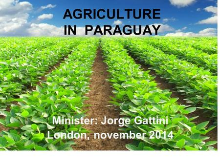 AGRICULTURE IN PARAGUAY Minister: Jorge Gattini London, november 2014.