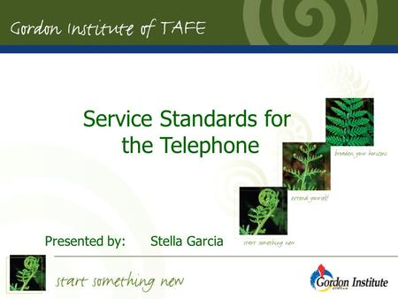 Presented by:Stella Garcia May 2007 Service Standards for the Telephone Presented by:Stella Garcia.
