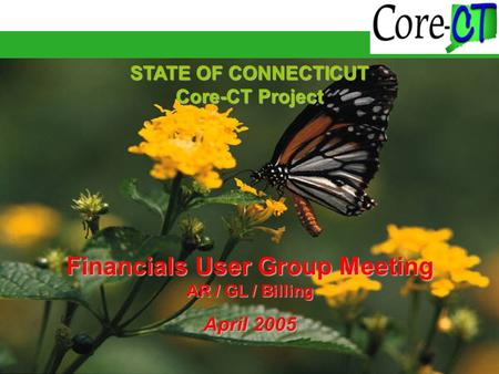 STATE OF CONNECTICUT Core-CT Project Financials User Group Meeting AR / GL / Billing April 2005.