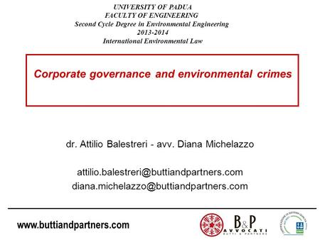 Corporate governance and environmental crimes
