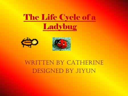 The Life Cycle of a Ladybug Written By Catherine designed by Jiyun.