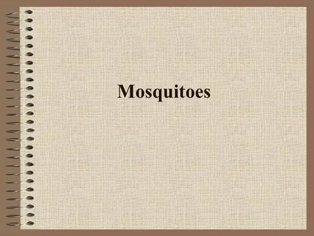 Mosquitoes.