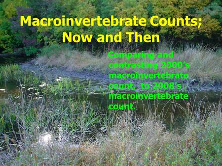Macroinvertebrate Counts; Now and Then Comparing and contrasting 2000's macroinvertebrate count, to 2008's macroinvertebrate count.