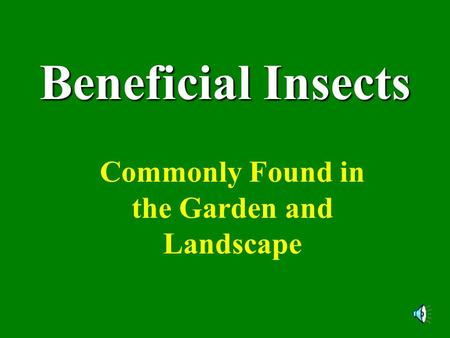 Beneficial Insects Commonly Found in the Garden and Landscape.