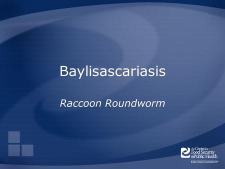 Baylisascariasis Raccoon Roundworm. Overview Organism History Epidemiology Transmission Disease in Humans Disease in Animals Prevention and Control Actions.
